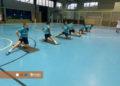 Adestramento Ourense Envialia B / BEA SEIJAS DISEÑO GRÁFICO