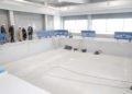 O complexo deportivo do Castrillón comezará a funcionar en 2021 xestionado por Emvsa / CONCELLO DA CORUÑA